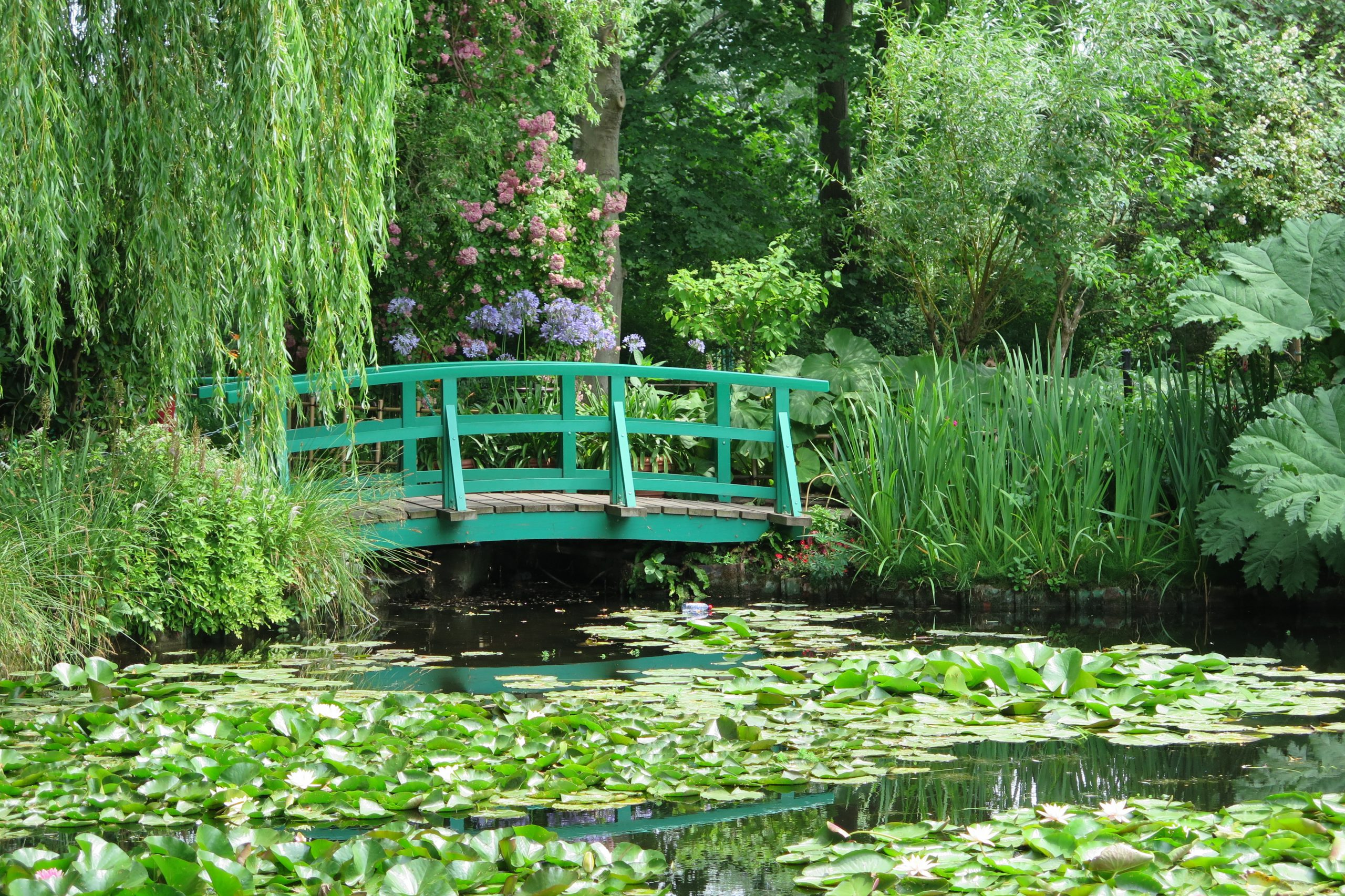 nympheas giverny